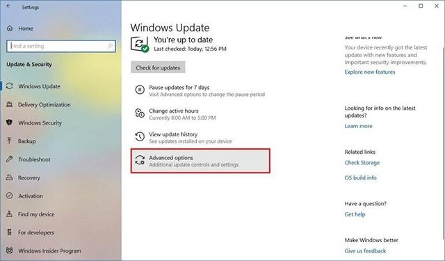 Windows Update settings advanced option